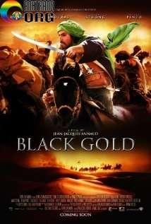 VC3A0ng-C490en-Black-Gold-2011